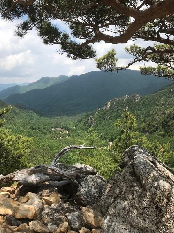登攀中の景色