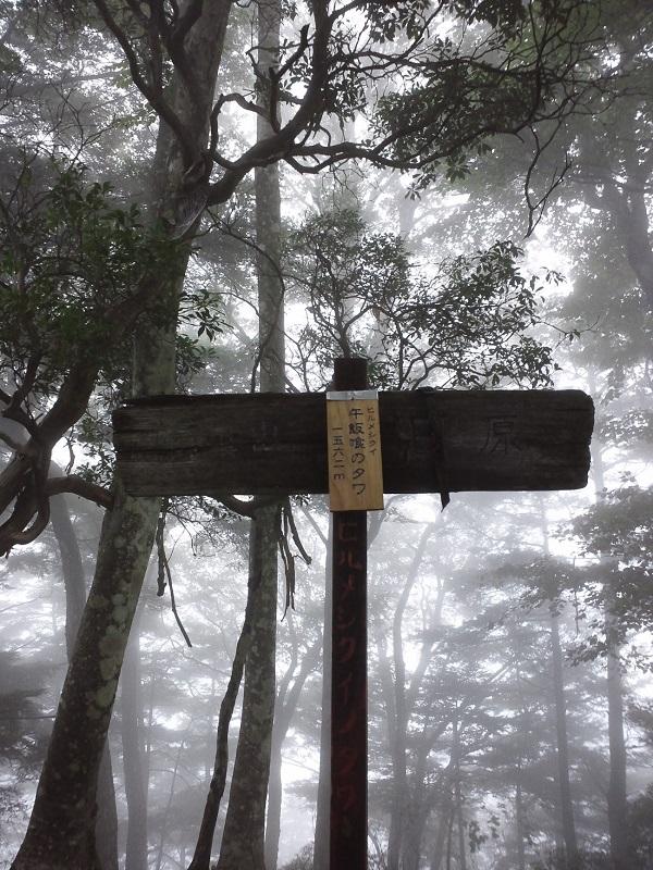 登山道にでて最初のポイント地点。ユニークな名前で印象的だった。