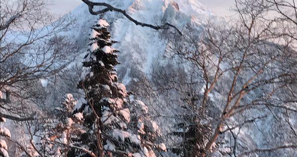 三ツ頭と権現の間のコルから撮った赤岳