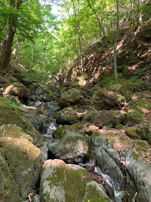 下山途中の薄川