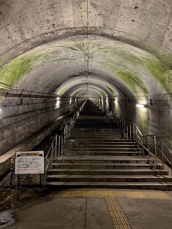 長くて暗い土合駅