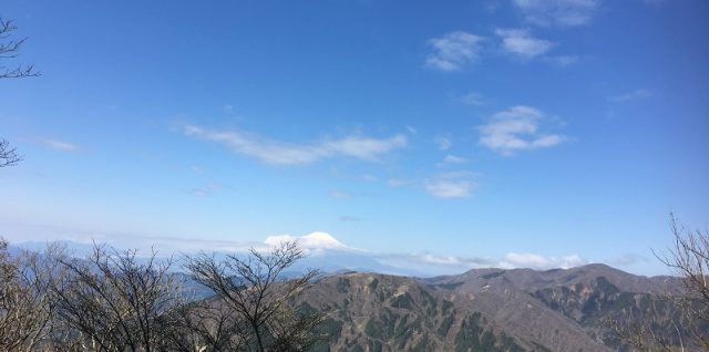 大山:富士見台にて富士を望む